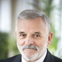 prof. dr hab. Włodzimierz Wołosiuk